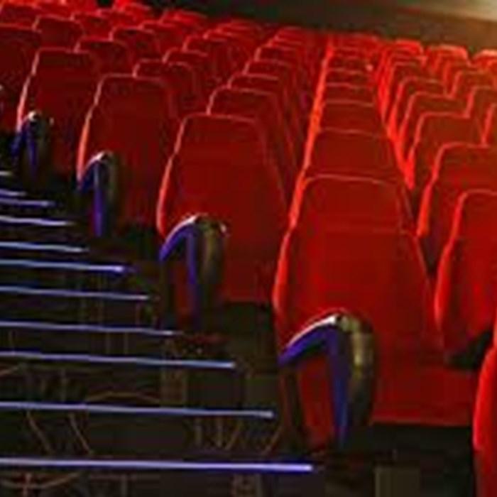 سینما به تنهایی توان حمایت از سینما را ندارد