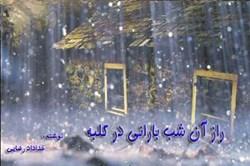 نمایشنامه راز آن شب بارانی در کلبه سر راهی