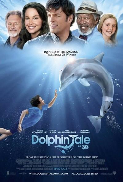 داستان دلفین