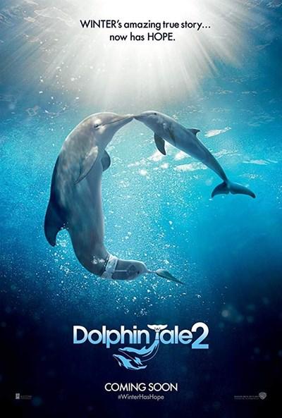 داستان دلفین 2