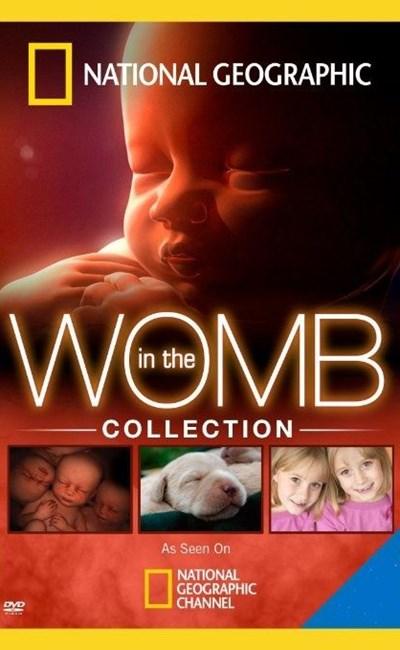 دانلود مستند رشد جنین انسان