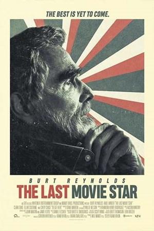 آخرین ستاره سینما