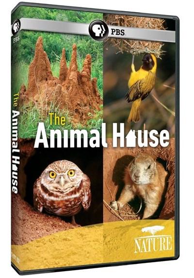 دانلود مستند خانه حیوانات