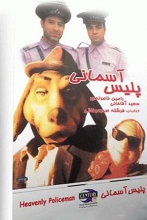 پلیس آسمانی