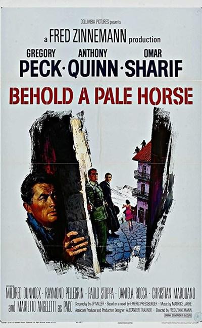 اسب کهر را بنگر