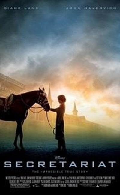 اسب مسابقه