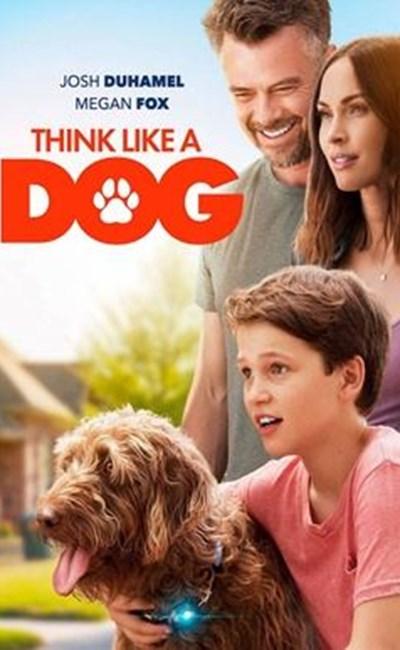 مثل یک سگ فکر کن